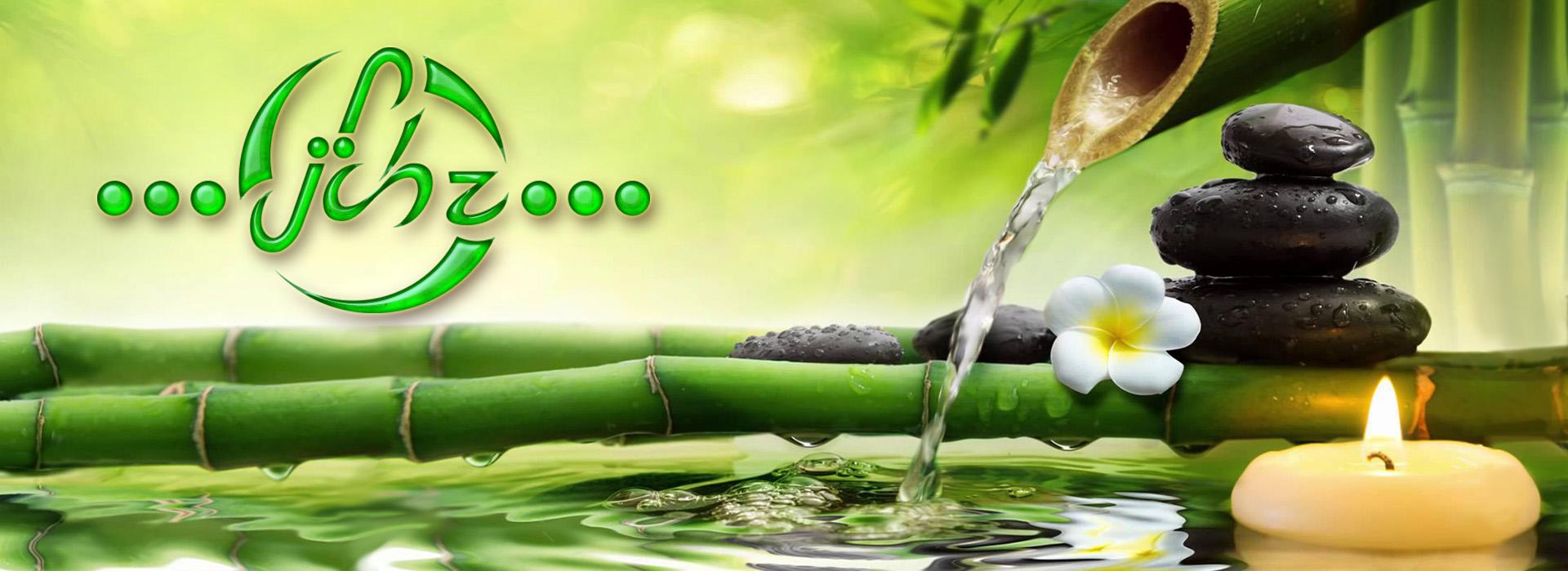 tu oasis